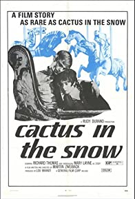 Primary photo for Cactus in the Snow