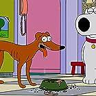 Dan Castellaneta and Seth MacFarlane in Family Guy (1999)