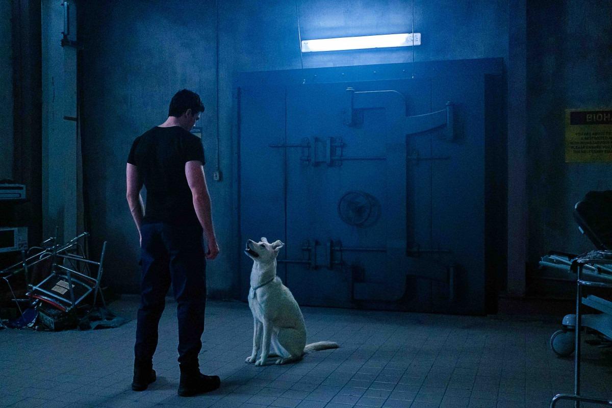 Joshua Orpin in Titans (2018)