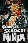 Shaolin vs. Ninja (1983)