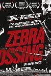 Zebra Crossing (2008)