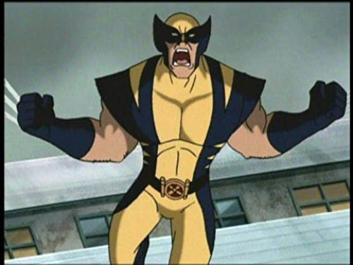 Wolverine and the X-Men: Seasons One To Three