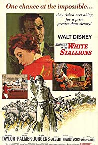 Primary photo for Miracle of the White Stallions