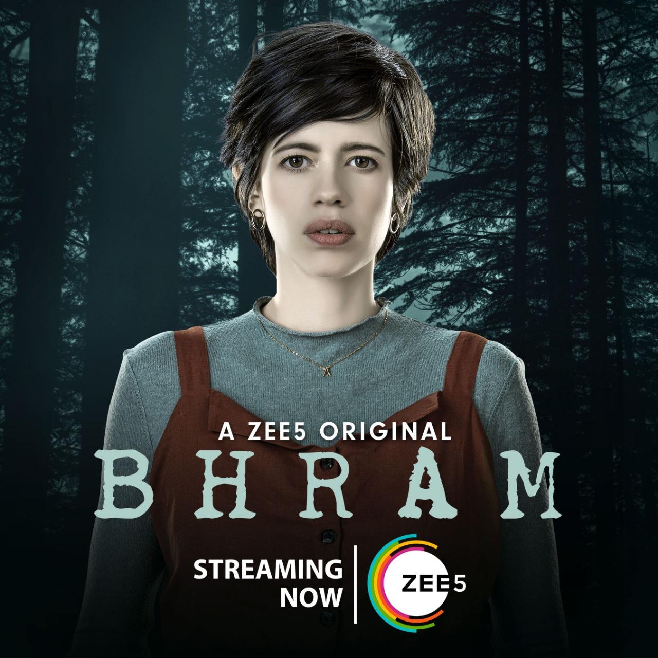 Bhram (TV Series 2019– ) - IMDb