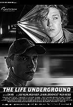 The Life Underground