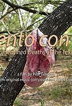 Lamento Con Alas: Documenting Unidentified Deaths Along the Texas-Mexico Border