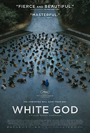 Where to stream White God