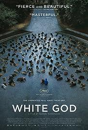 White God Streaming