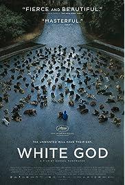 Fehér isten (2014) film en francais gratuit