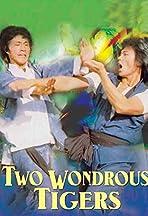 2 Wondrous Tigers