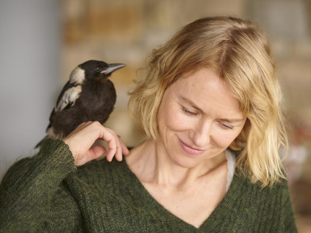 Penguin Bloom (2020) - Photo Gallery - IMDb