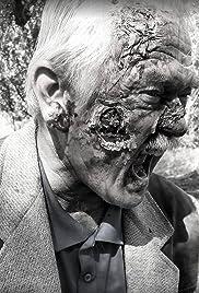 Dawn of the Zombie Apocalypse Poster