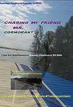 Chasing my friend, Mr. Cormorant