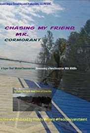 Chasing my friend, Mr. Cormorant Poster