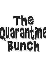 The Quarantine Bunch