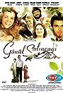 Gönül salincagi (2007) Poster