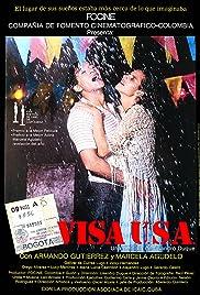Visa USA Poster