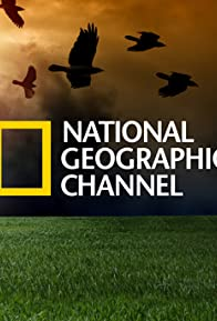 Primary photo for National Geographic Today