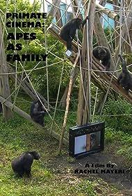 Primate Cinema: Apes as Family (2012)