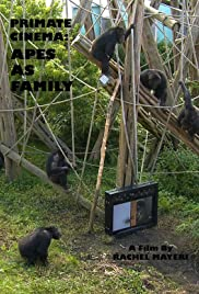 Primate Cinema: Apes as Family Poster
