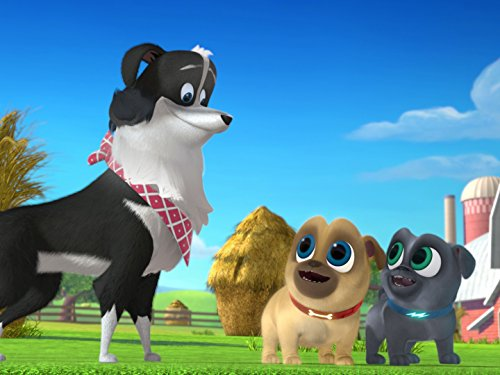 Puppy Dog Pals Leave It To Beavers Counting Sheep Tv Episode 2017