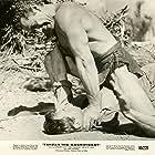Jock Mahoney and Gordon Scott in Tarzan the Magnificent (1960)