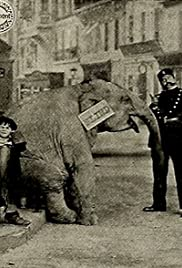 Tiny Tim and the Adventures of His Elephant Poster