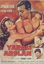 Yarali aslan Poster