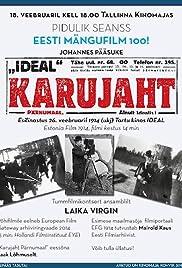 Karujaht Pärnumaal Poster
