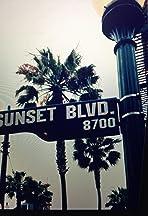 Boulevard Misfits