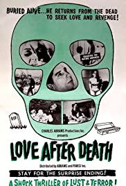 Love After Death Poster