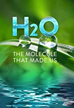 H20: The Molecule That Made Us