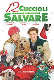 Danielle C. Ryan and James Gaisford in 12 Dogs of Christmas: Great Puppy Rescue (2012)