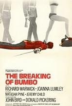 The Breaking of Bumbo