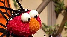 Elmo's Butterfly Friend