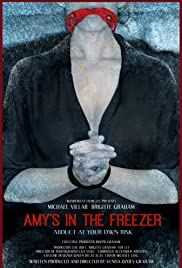 Amy's in the Freezer Poster