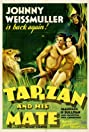 Tarzan and His Mate (1934) Poster