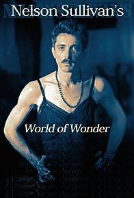 Primary photo for Nelson Sullivan's World of Wonder