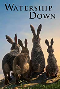 Primary photo for Watership Down