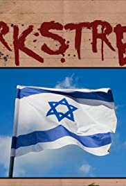 Why I Support the State of Israel Poster