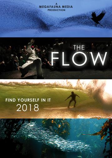 The flow 2018 imdb solutioingenieria Images