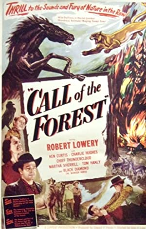Where to stream Call of the Forest