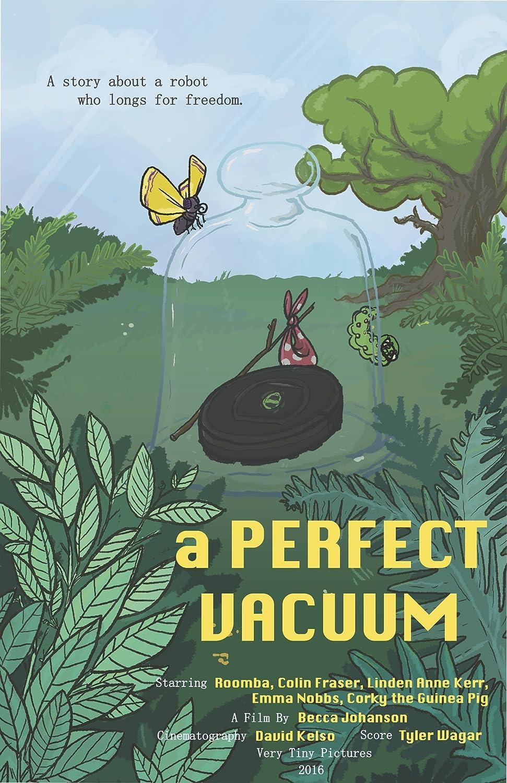 A Perfect Vacuum 2016