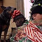 Hooligan, Justin Hoffmeister, and John Kenward in Alone for Christmas (2013)