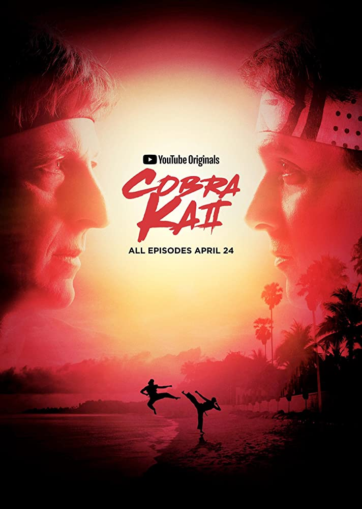 Cobra Kai 2020 S01 Complete Hindi Netflix Web Series 935MB HDRip Download