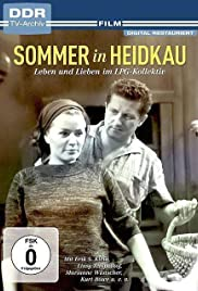 Sommer in Heidkau Poster