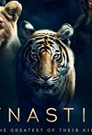 Dynasties | Watch Movies Online