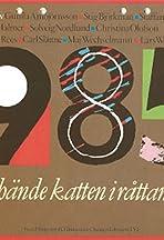 1985 - Vad hände katten i råttans år?