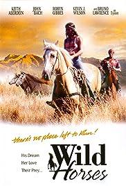 Wild Horses Poster