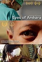 Eyes of Amhara